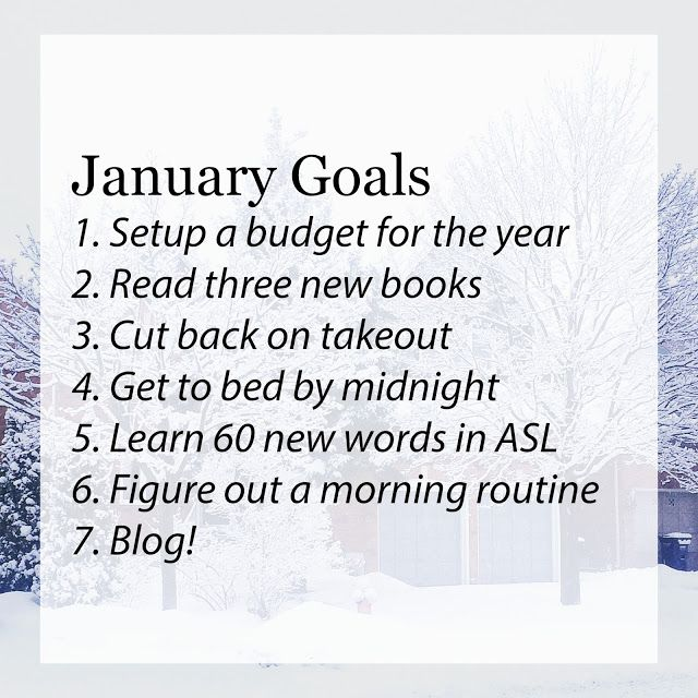 The Preppy Scientist: January Goals!