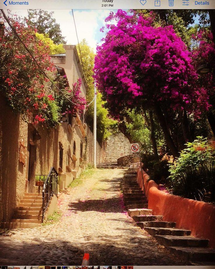 15 Instagram-Worthy Things in San Miguel de Allende, Mexico – NomadWomen
