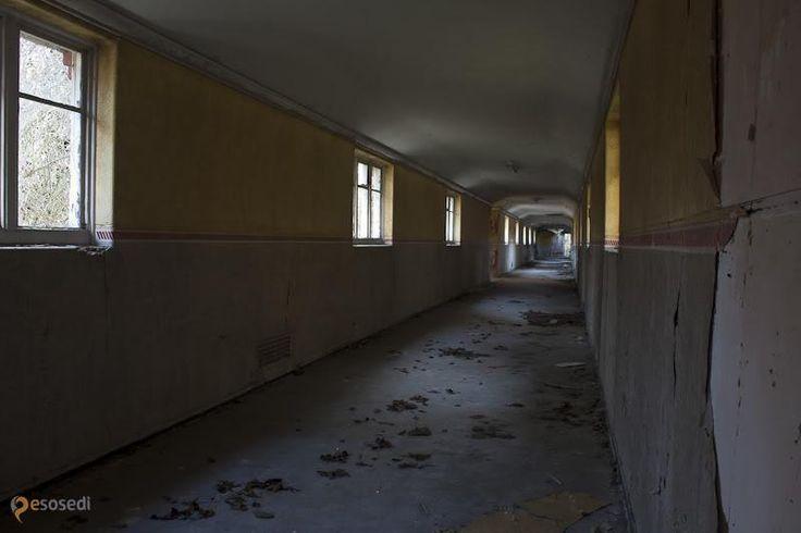 Психиатрическая больница Severalls Hospital – #Великобритания #Англия #Колчестер (#GB_ENG) Заброшенная психиатрическая клиника в Великобритании http://ru.esosedi.org/GB/ENG/1000195661/psihiatricheskaya_bolnitsa_severalls_hospital/