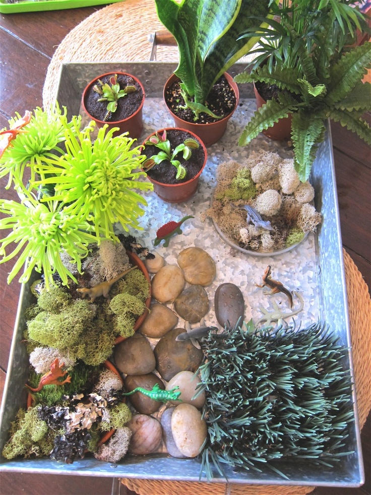 Miniature Garden Ideas Projects
