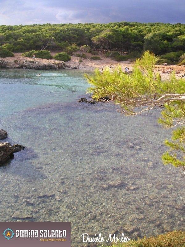 Porto Selvaggio's reserve - Parco Naturale Regionale Porto Selvaggio e Palude del Capitano, Nardò, Province of Lecce, Italy - DominaSalento.it