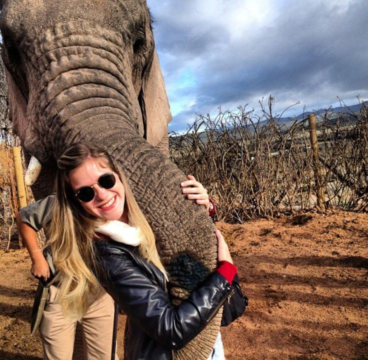 Experience the exhilarating adventure of getting up close and personal with one of Africa`s greatest animals !  To join in on the fun   http://book.hotspots2c.co.za/keyword/elephants