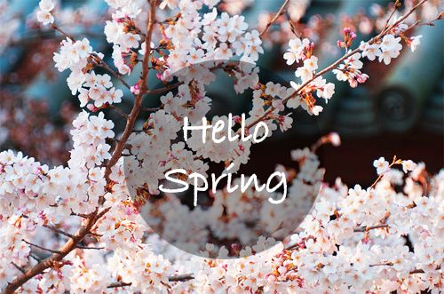 spring backgrounds tumblr Google Search Seasons