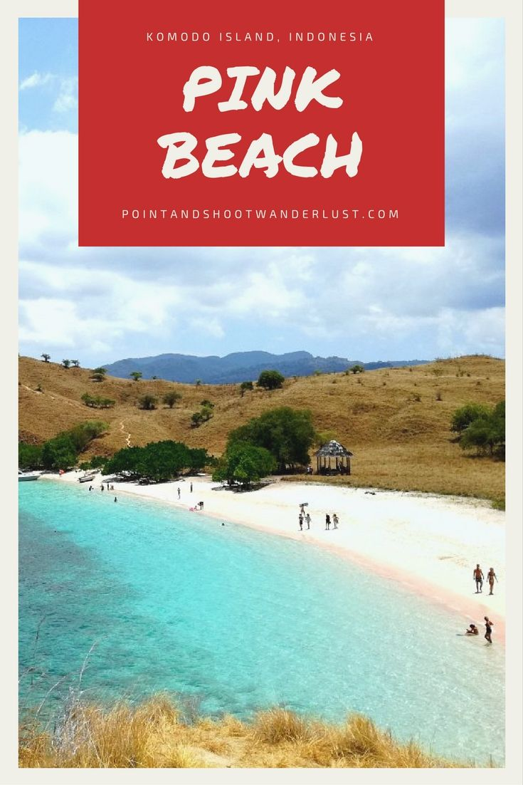 One of the world's PINK BEACH can be found in Komodo Island in East Nusa Tenggara, Indonesia! | Southeast Asia