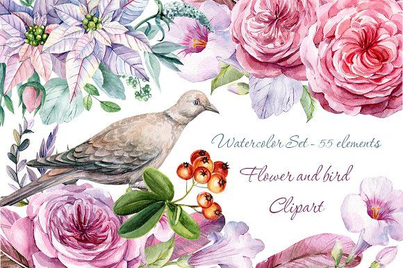 Flower and bird Clipart. Watercolor by Gringoann on @creativemarket
