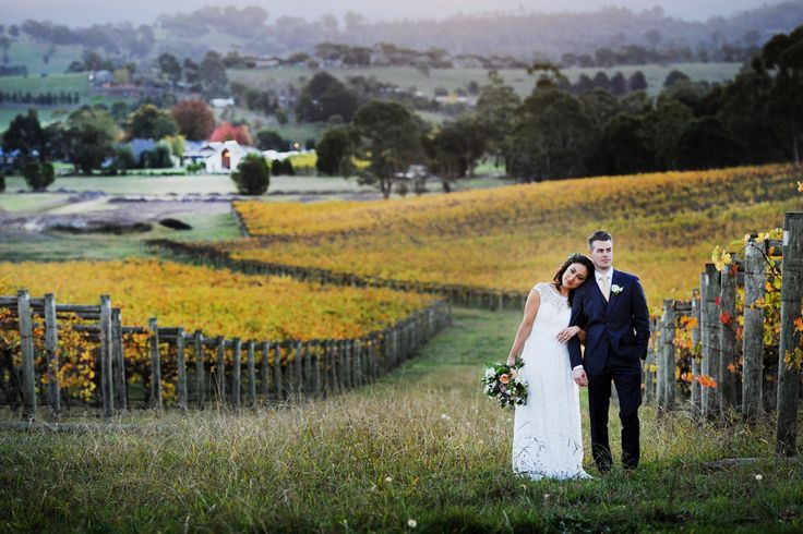 Autumn vines in the Yarra Valley for winery wedding  ~ Tizia May photography ~