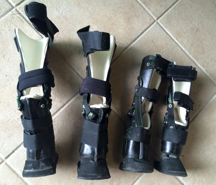 Brutus, the Rottweiler received his 4 prosthetic devices!  These are his prosthetics.  OrthoPets is the founders of orthotics and prosthetics for animals. #betterpawsforbrutus