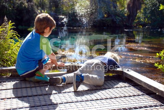 Small Boys Looking over Jetty into Water royalty-free stock photo