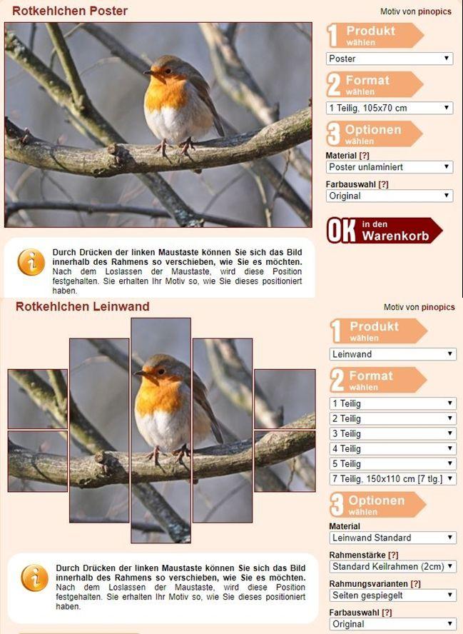 Rotkehlchen Leinwand Exklusiv: Fertig gerahmte Leinwand Rotkehlchen Fotoleinwand günstig als Kunstdruck kaufen.   Ein Rotkehlchen im Winter auf einem kahlen Baum