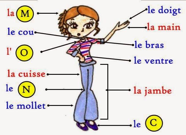 best 25  vocabulaire fran u00e7ais ideas on pinterest