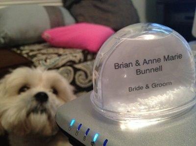 DIY snow globe place cards! | Weddings, Do It Yourself, Planning, Fun Stuff | Wedding Forums | WeddingWire