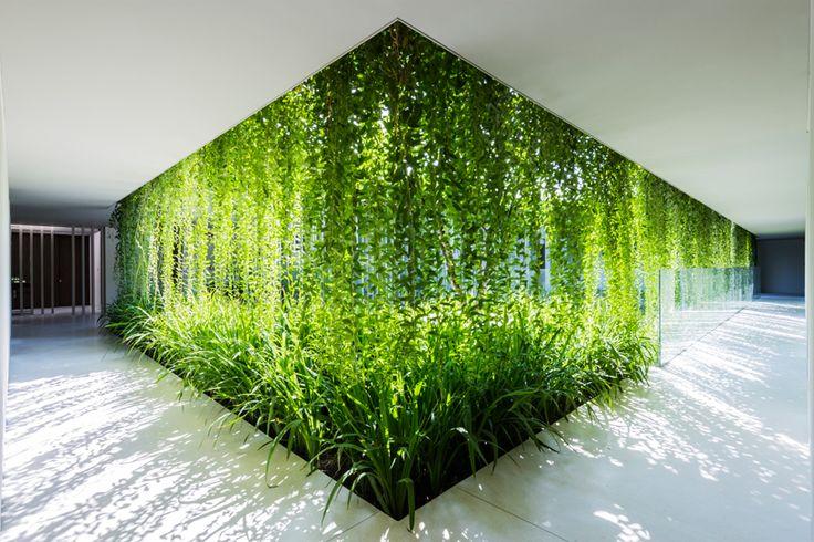 Green curtain to building edge framing courtyard MIA-design-naman-retreat-spa-vietname-designboom-02