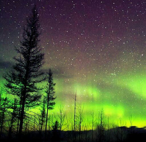 Northern lights in Glacier Park Montana