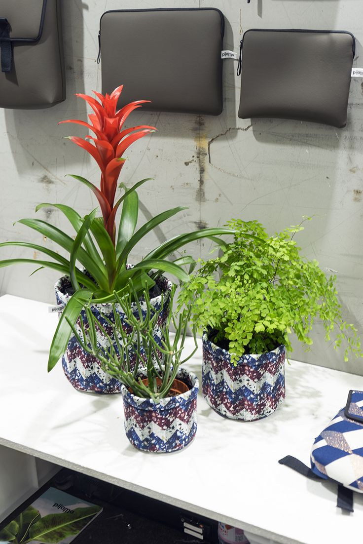 Plant Trends from Maison et Objet September 2017 in Paris - terrazzo print plant pot covers from Pijama