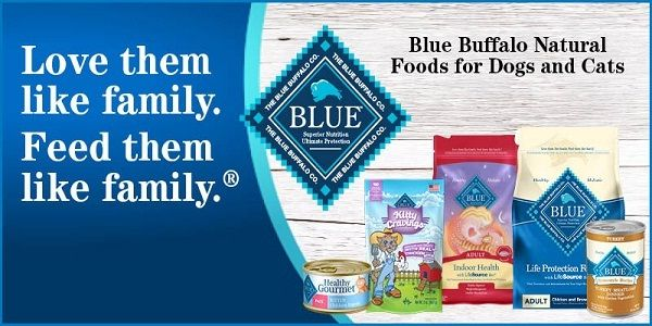 Www Bluethankyou Com Win A Coupon For Valuable Savings On Your