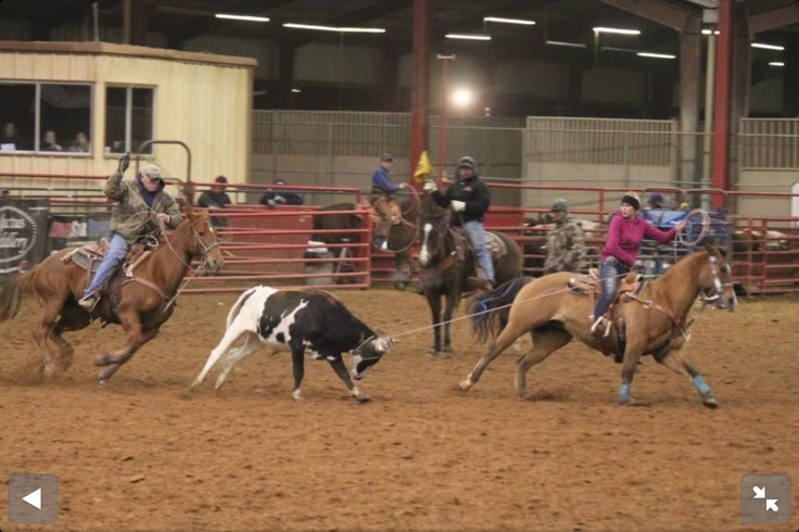 Team Roping Brandy Winning At The Fire It Up Roping In
