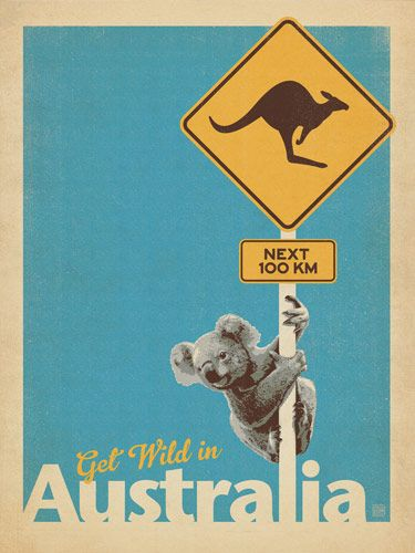 Australia: Get Wild (Koala) - This whimsical print features a loveable Koala bear hanging on to a Kangaroo Crossing sign to get a good view of an Emu (not shown in the design.) This print is ideal for any  room with a sense of Down Under adventure! It is also perfect for decorating any kid's room or nursery!