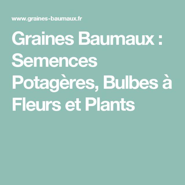 Graines Baumaux : Semences Potagères, Bulbes à Fleurs et Plants