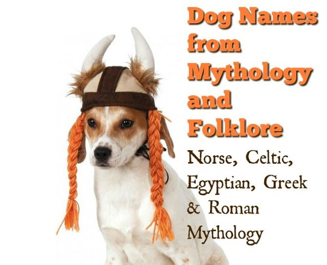 70 Unique Names For Dogs From Mythology And Folklore Dog Names Best Dog Names Dog Brain