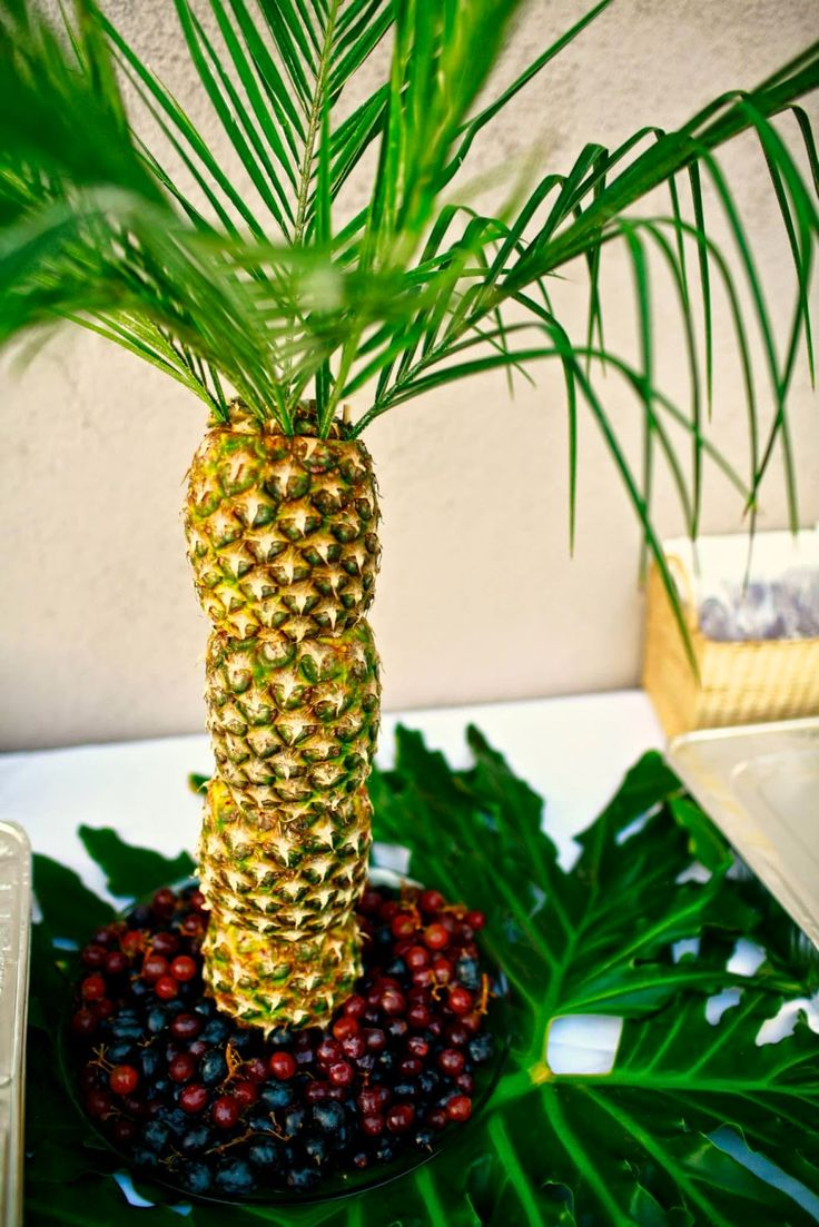 1000 Ideas About Pineapple Tree Centerpieces On Pinterest