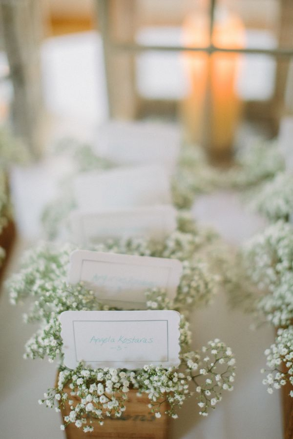 escort cards arranged in baby's breath // photo by Volatile Photography // http://ruffledblog.com/vintage-romance-sonoma-wedding