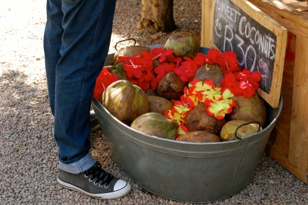 South Africa, Maboneng Precint. Coconuts