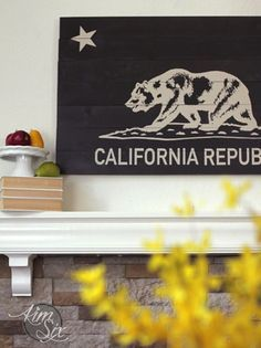She made this stained and stenciled California State Flag sign.. out of super cheap culled lumber (the big box stores mark it down because it is warped or has too many knots!)  What a great project to use it on!