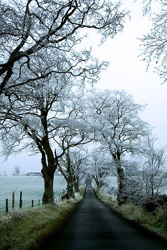 Deserted road near Dryburgh in the Scottish Borders after a hard frost on Christmas Day