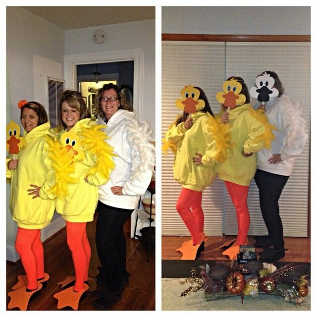45 best costume creations images on pinterest goose costume duck duck goose loved our costumes solutioingenieria Gallery