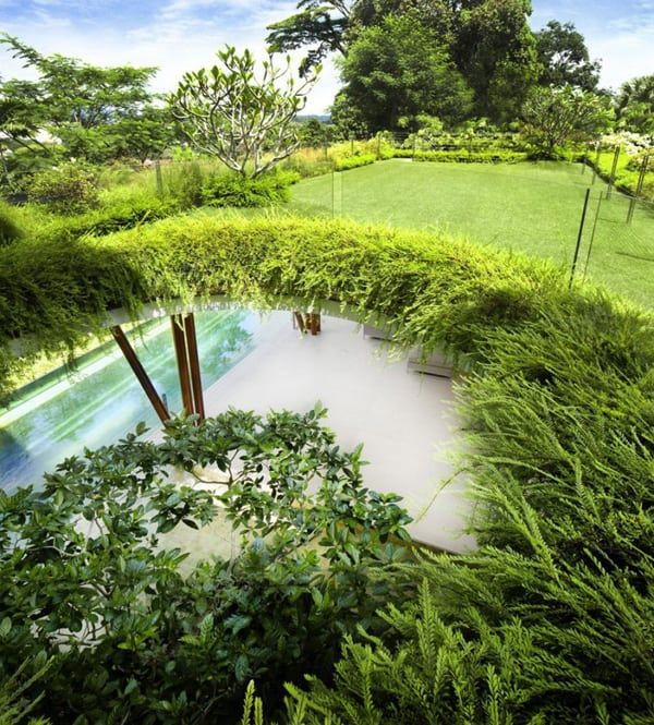 Modern Singapore oasis embracing nature: Willow House in ...
