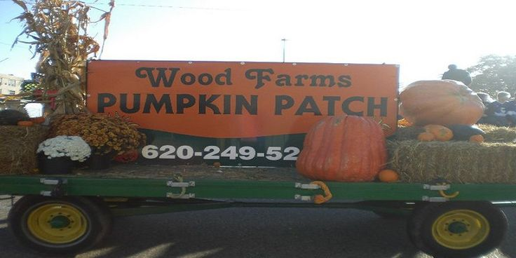 Wood Farms Pumpkin Patch is open Saturdays and Sundays during the month of October. They offer hay rides, hay mazes, corn box, tire mountain, inflatables, barrel train, interactive milk cow, petting zoo, pumpkin slingshots. They also have picnic areas/fire pit for groups and offer educational field trips during the week.