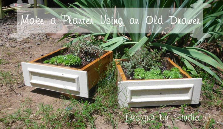 Make a Planter Using an Old Drawer