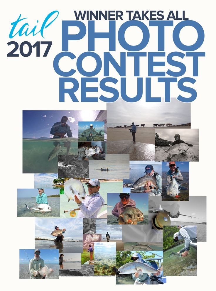 saltwater fly fishing photo contest - tail fly fishing magazine photo contest