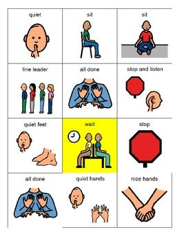 Behavior Picture Cards.  I have these and they def help with certain children who need that visual