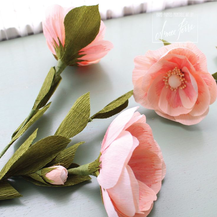 A Martha Stewart style DIY Crepe Paper Flower Roses tutorial with Aimee Ferre using video and detailed photographs to share techniques.