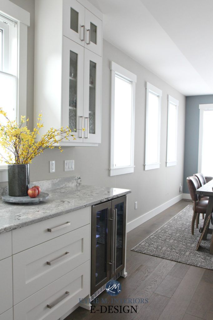 Paint Colour Review Sherwin Williams Colonnade Gray Grey