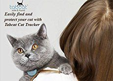 J wants to track Melody... May 18, 2016 - Check out the Top 13 GPS Tracking Devices for cats and dogs of 2016   Winner WOW!!!!- The Paw Tracker because they have 3 Color Choices and Small Size