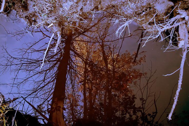 Liquid mirror by Adida Fallen Angel on 500px