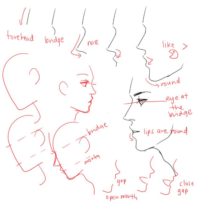 UMM PEOPLE ASKED ABOUT NOSES AND EARS SO YEAH!! Please