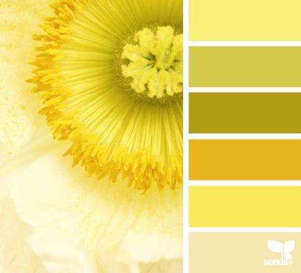 Yellow Glow Color Palette #design