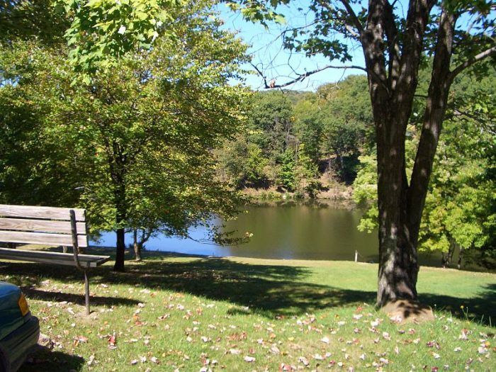 9. Tomlinson Run State Park, Hancock County