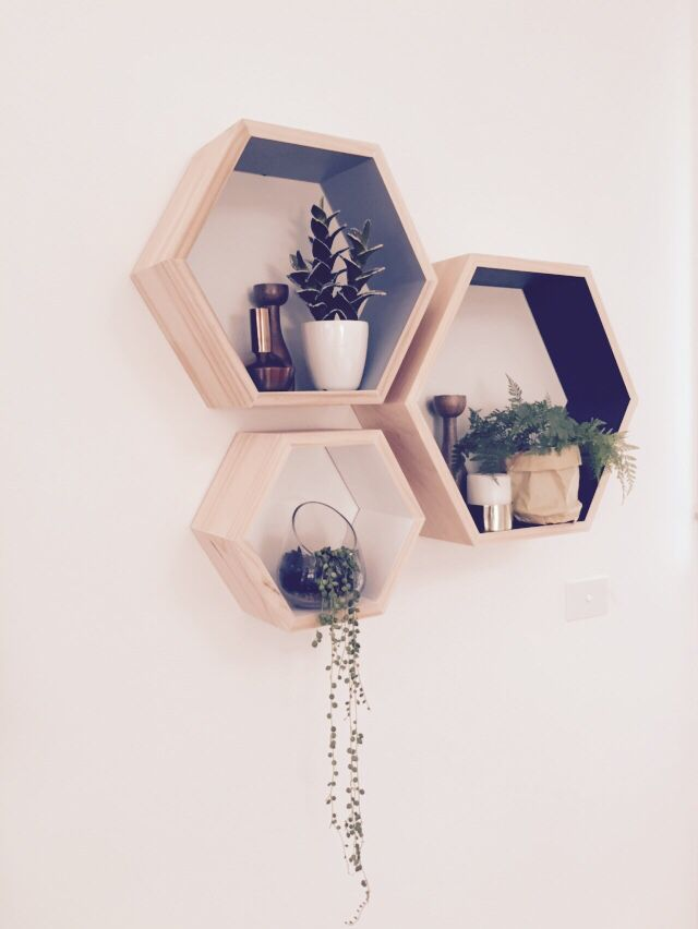 Hexagonal boxes styled with plants and metallic accents.