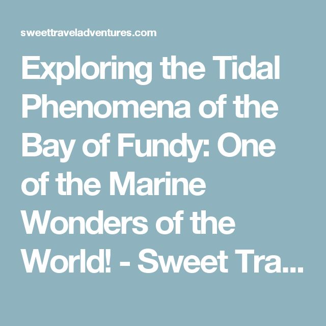Exploring the Tidal Phenomena of the Bay of Fundy: One of the Marine Wonders of the World! - Sweet Travel Adventures