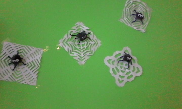 pavúci