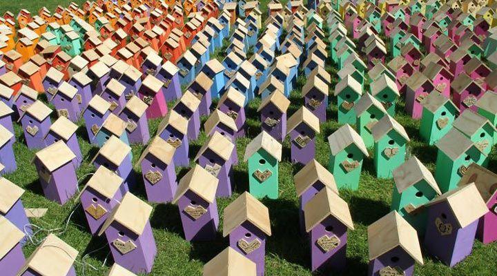 Датский художник и дизайнер Томас Дамбо, автор невероятно зрелищных скульптур из дерева колоссальных размеров, дал жизнь новому проекту «Счастливые городские птицы». Склоняясь к легендарной экологической сознательности жителей скандинавских стран, Дамбо использует для работы исключительно отходы древесины, которые посчастливится найти в окрестностях города. Томас Дамбо имеет свое ТВ-шоу и миллионы просмотров на YouTube.