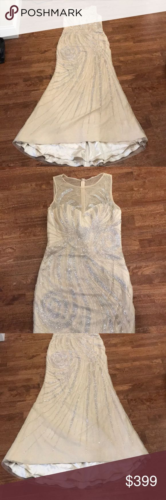 Champagne Evening dress with silver beading New with tags. Elegant Dress with fit and flare bodice and a tail at the back, fully lined. Comes with extra replacement beads Alyce Paris Dresses