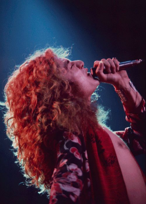 A rare, previously unseen photo of Robert Plant performing at MSG on the 1975 Led Zeppelin tour.