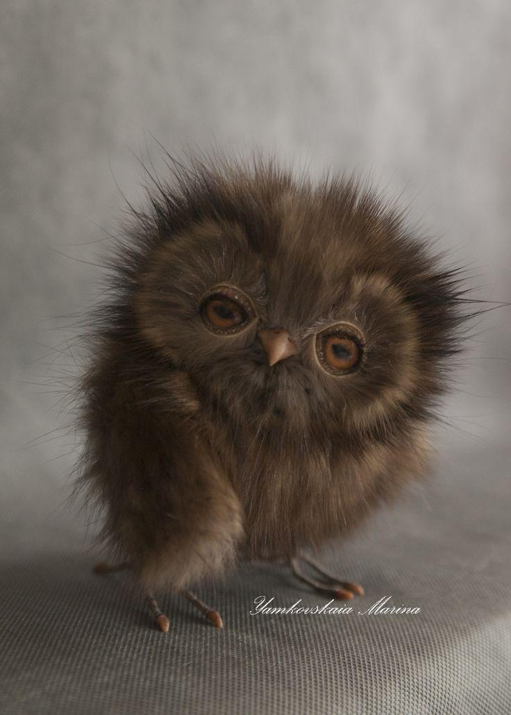 owl Ludwig