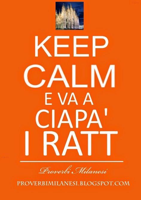 Milanese :-) #KeepCalm e va a ciapà i ratt