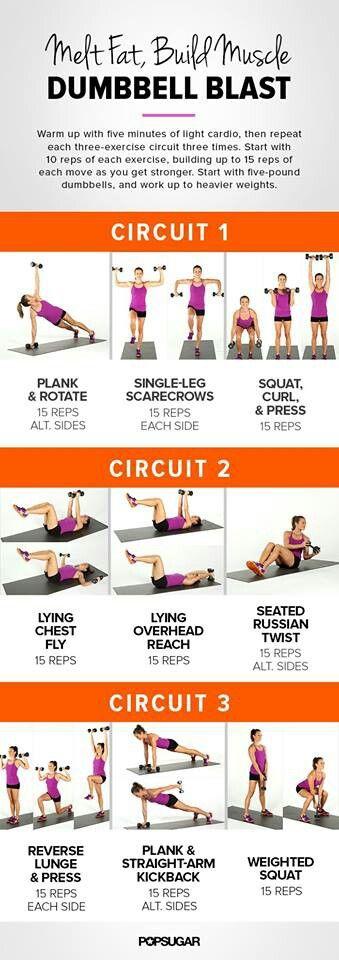 3 circuit sport.